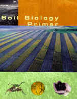 Cover of Soil Biology Primer as published by SWCS